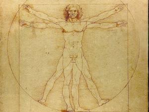 Human body leonardo-da-vinci